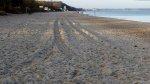 Plaża w Ustce